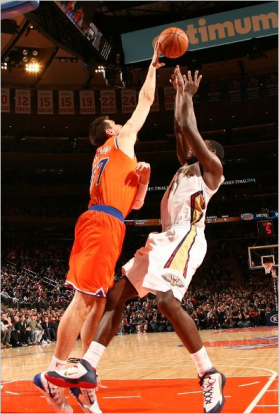 Bargnani_block